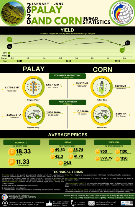 1st Semester Ifugao Palay and Corn Statistics